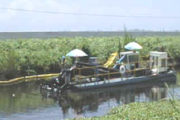 Mud Cat MC-2000 Used to Dredge West Palm Beach Canal