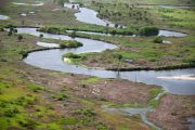 USACE Update: 28 Miles of Kissimmee River Restored